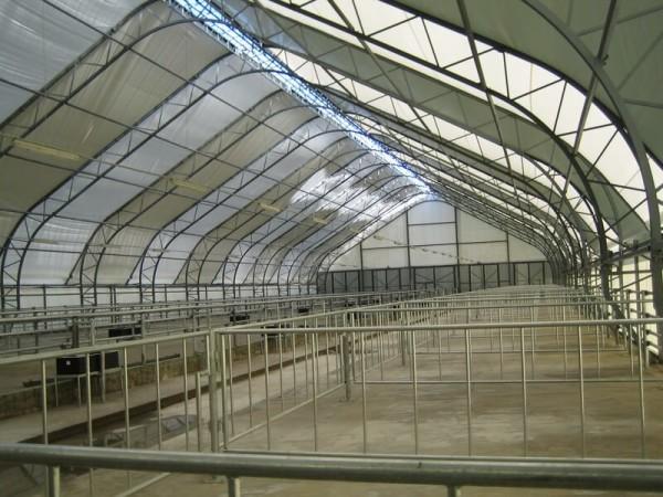 Строительство свинарника, цена в Минске