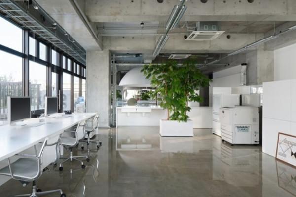 Дизайн офиса под ключ в Минске