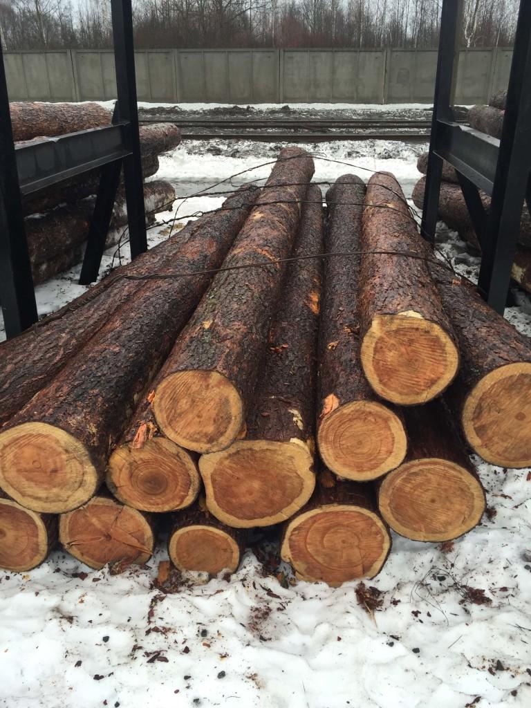 Кедр, стоимость доставки леса